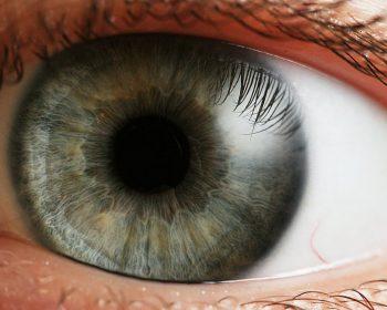 Gros plan sur l'iris d'un œil humain
