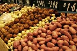 Pommes de terre de différentes variétés